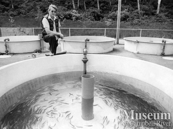 Quinsam Fish Hatchery, September 1976