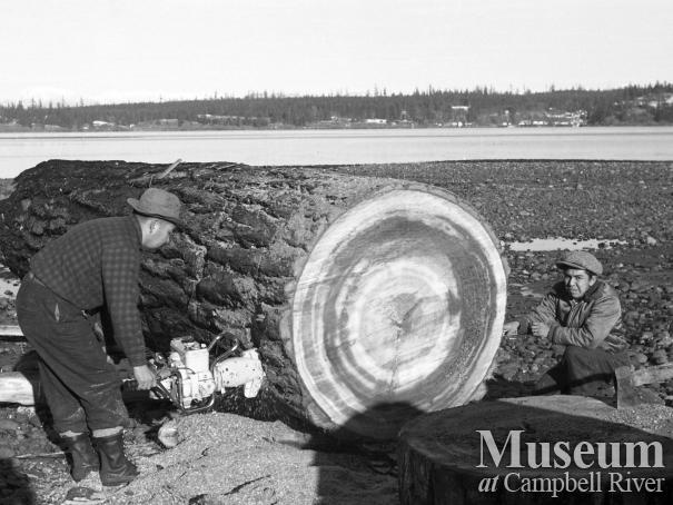 Men on beach with large log
